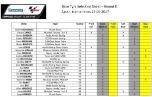 Выбор шин Michelin на Гран-При Нидерландов 2017