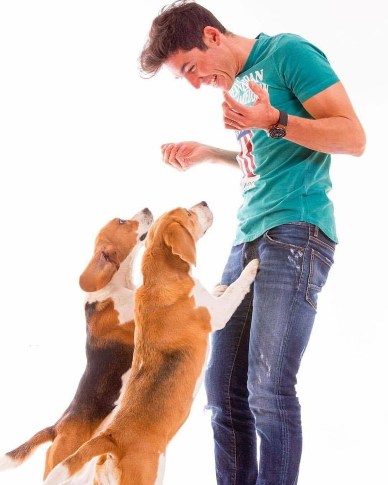 Алейш Эспаргаро с собаками