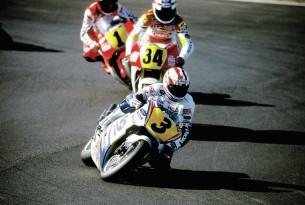 Дуэн, Шванц и Рэйни (1991)